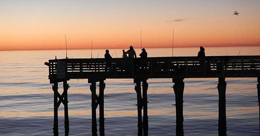 The 6 best places to fish saltwater in galveston texas for Galveston pier fishing