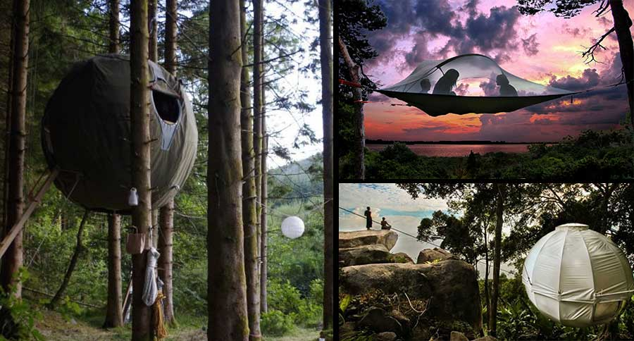 & Top 10 Tree-Tent Camping Setups