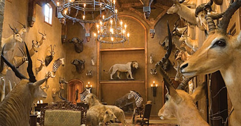 These 11 Hunters' Trophy Rooms Are Completely Unbelievable on plot design, cave glass, cave pool, mansion design, cave house floor plans, lodge design, cave house interior, cave architecture, tower design, parking design, cave space, triplex design, cave doors, cave building, vineyard design, building design, castle design, cave landscape, mobile home design, cave lighting,