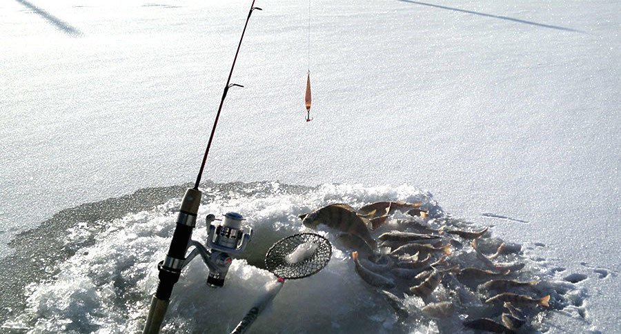 Improve your odds with these 15 ice fishing rods for Fishing rod game