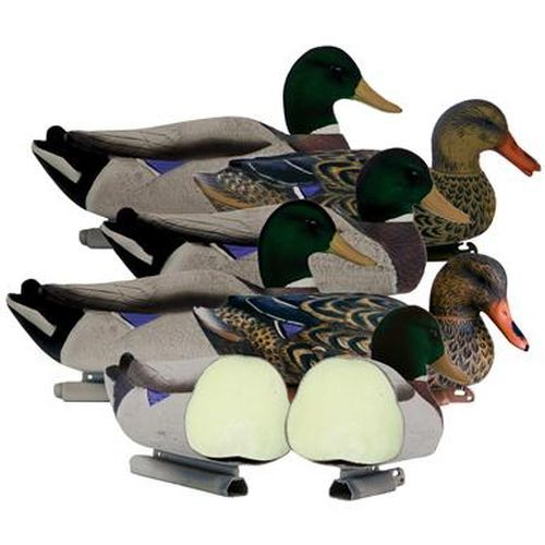 http://www.sportsmansguide.com/product/index/6-pk-of-higdon-foam-filled-magnum-mallard-decoys-with-flocked-heads?a=1747170