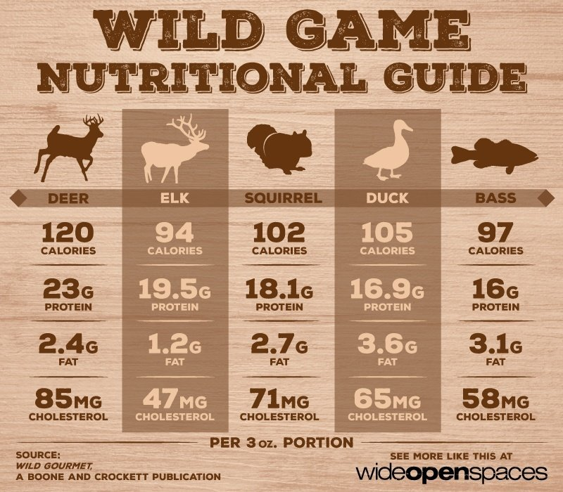 Outdoorsmen Infographics - Wild Game Nutritional Gude