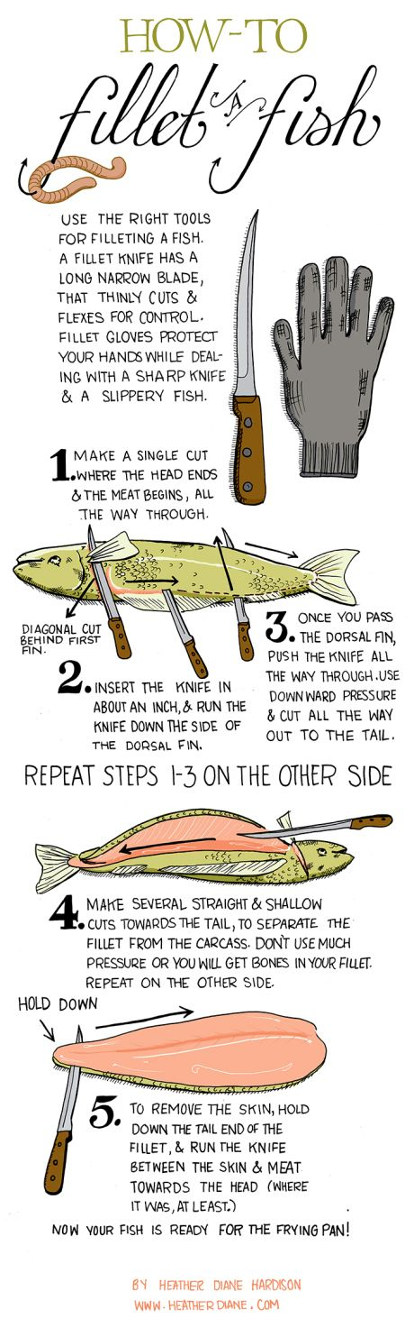 Outdoorsmen Infographics - How to Fillet a Fish