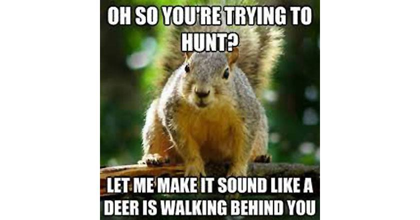 14 deer hunting memes you definitely want to share pics