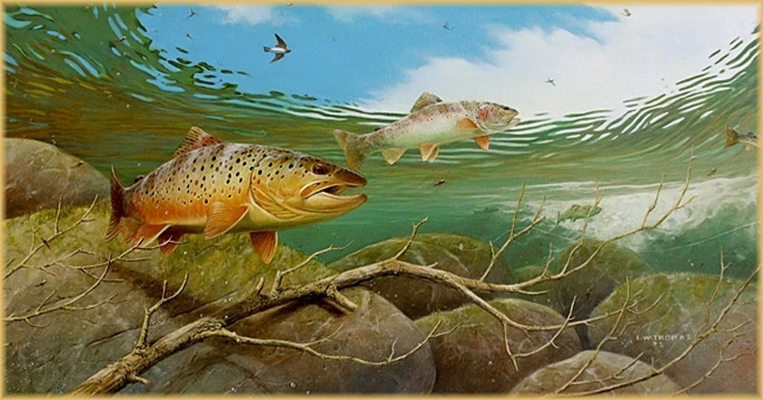 20 of the most realistic fish paintings you 39 ll ever see pics for Fish scenery drawing