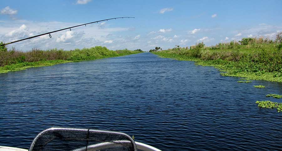 Florida 39 s free fishing dates are fast approaching for Florida non resident saltwater fishing license
