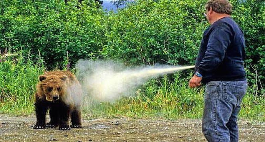 You Can Rent Bear Spray at Yellowstone National Park This ...