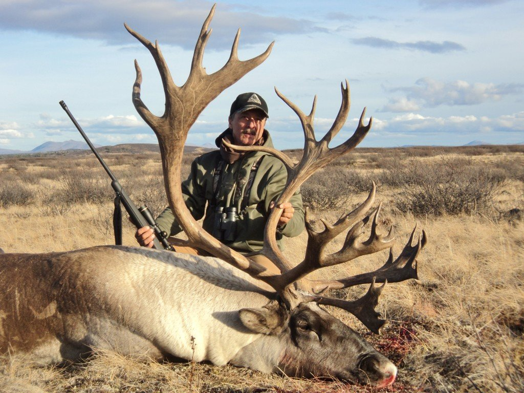 operator of the day big game hunting adventures caribou