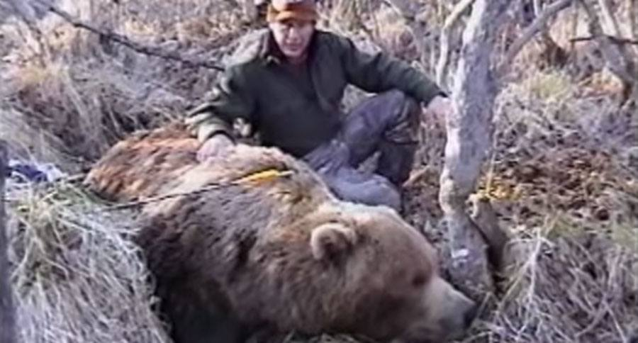 Incredible Footage Of Pope Amp Young World Record Grizzly