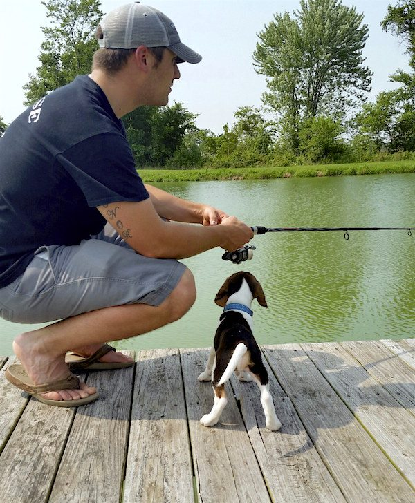 beagle puppy fishing picture