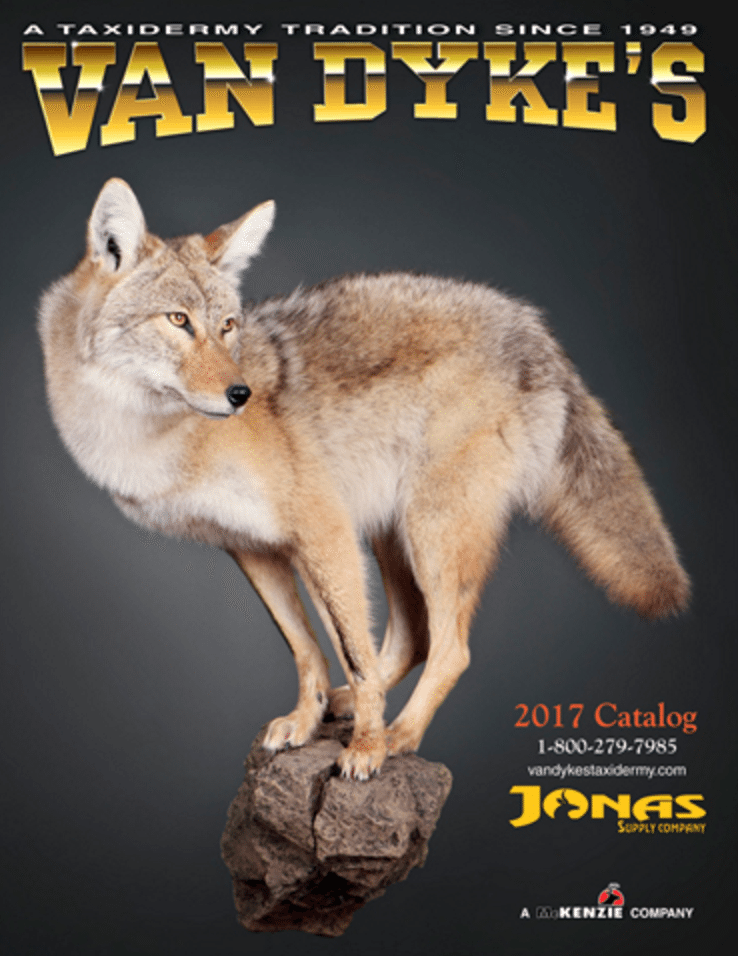 Van Dyke's, taxidermy