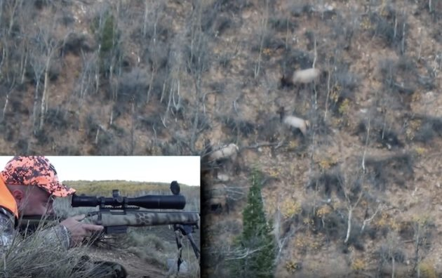 What Do You Think Of This 875 Yard Elk Kill With A .308 Winchester?