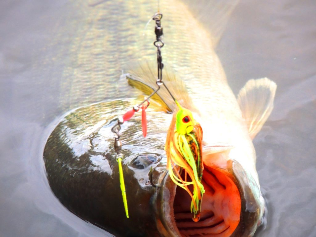 The right bait and tackle is a must during cold weather situations.