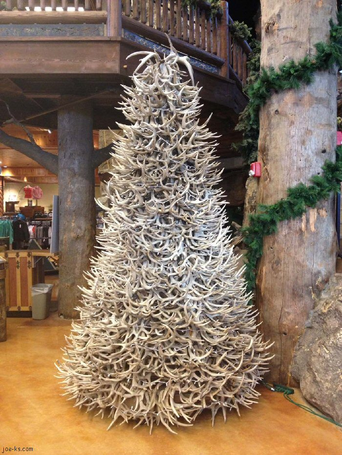 shed antler christmas trees