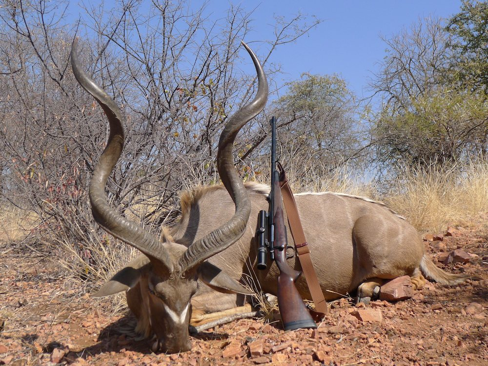 Here's How Much An African hunting Safari Costs kudu