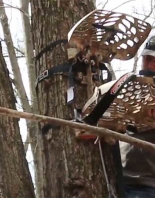 shed hunting tree stand