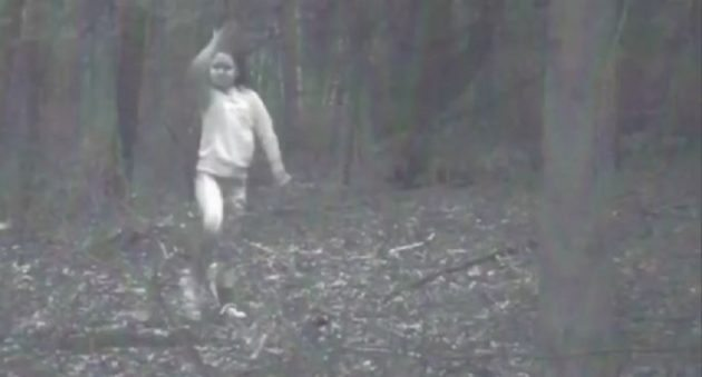mysterious trail cam pic