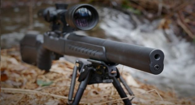 suppressed 10/22 rifle