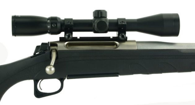 Why the  243 is Hands Down the Best Deer Rifle