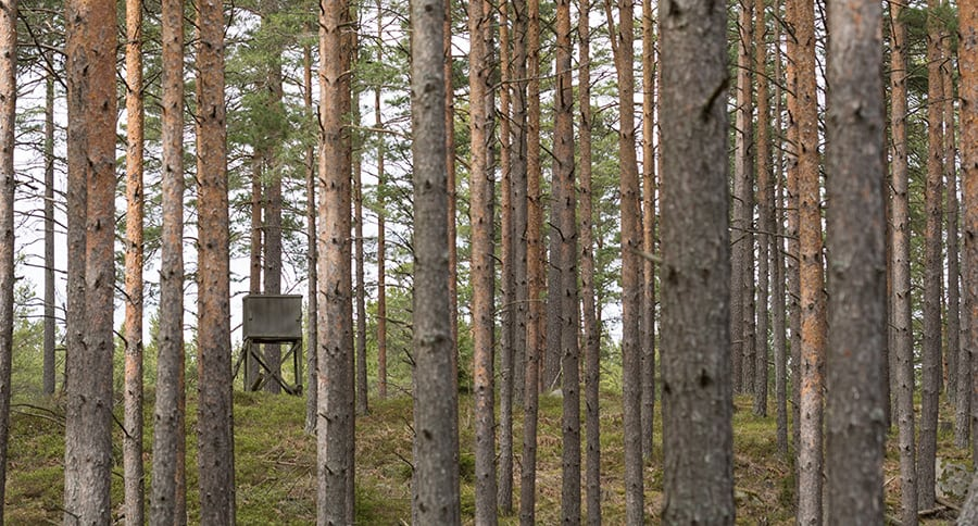 The Best Diy Hunting Blinds You Can Possibly Make This